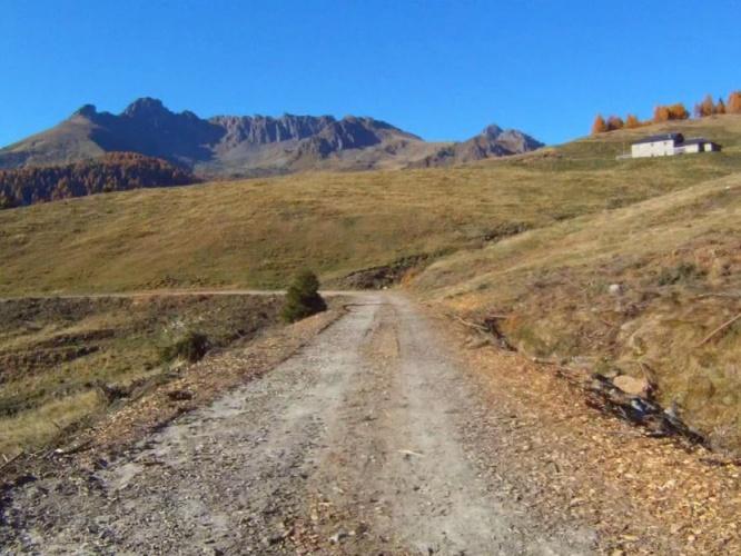MTB - Passo 5 Croci - Caoria preview